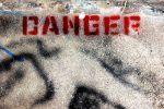 Alert: Danger in Your Garage!